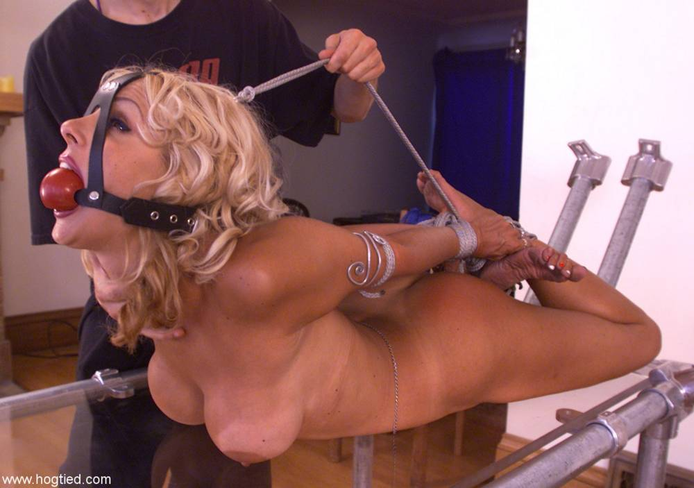 Kimber james sucking cock