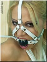 harness gagged
