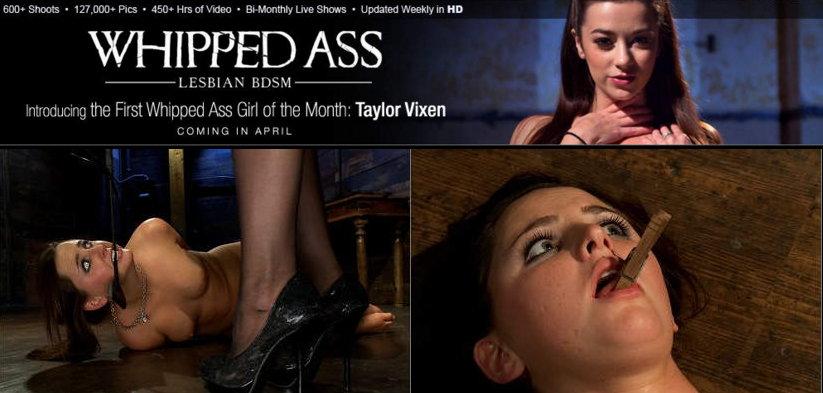Sex photo bdsm slave shows